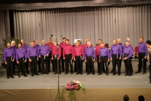 Liederkranz-Sänger auf der Bühne - Konzertteil 2 - (DSC07537)